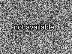 Europ ischer dorferneuerungspreis 2010 f r merkendorf in - Gartenbau ansbach ...